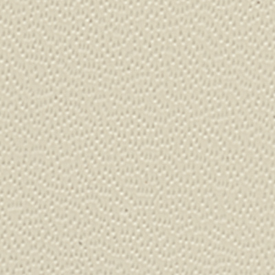 Plastic Laminate Ivory