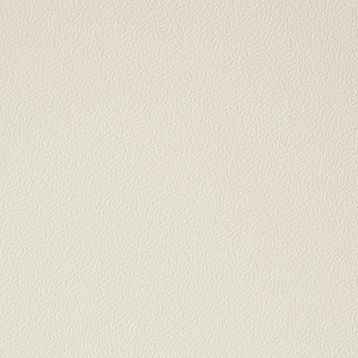 Skinplate Ivory A13
